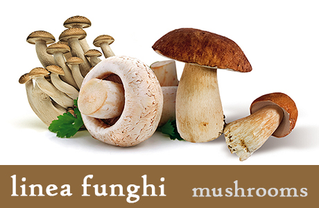 <p><h3>Mushrooms tris</h3>A mix of tastes: a selection of three varieties of mushrooms, ideal together with second courses.</p>