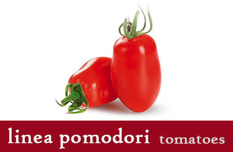 <h3>Dried Tomatoes</h3> One of the best representative of Apulian typical recipes. They are put in water and vinegar to make them sweeter, then spiced and preserved in oil. Their intense taste is appreciated all over the world. Ideal for cocktails or as side course with hard cheese.